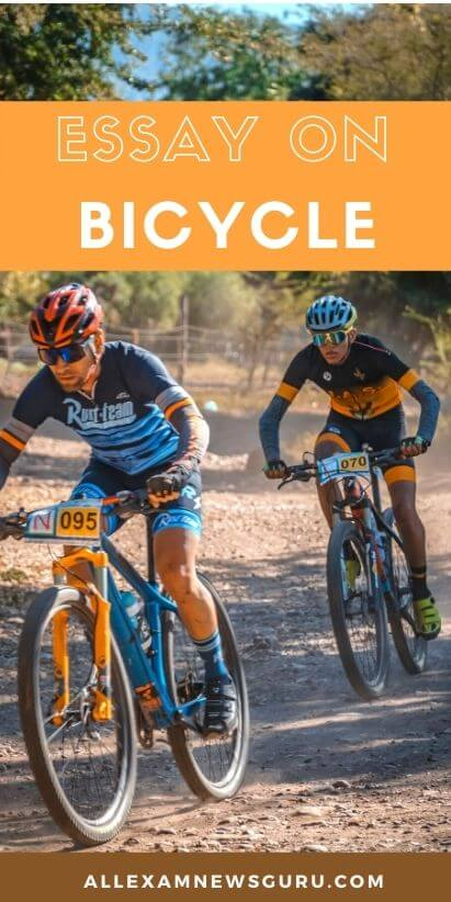 pin for bicycle essay